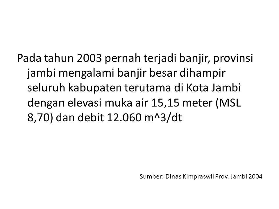 Pada tahun 2003 pernah terjadi banjir, provinsi jambi mengalami banjir besar dihampir seluruh kabupaten terutama di Kota Jambi dengan elevasi muka air 15,15 meter (MSL 8,70) dan debit 12.060 m^3/dt