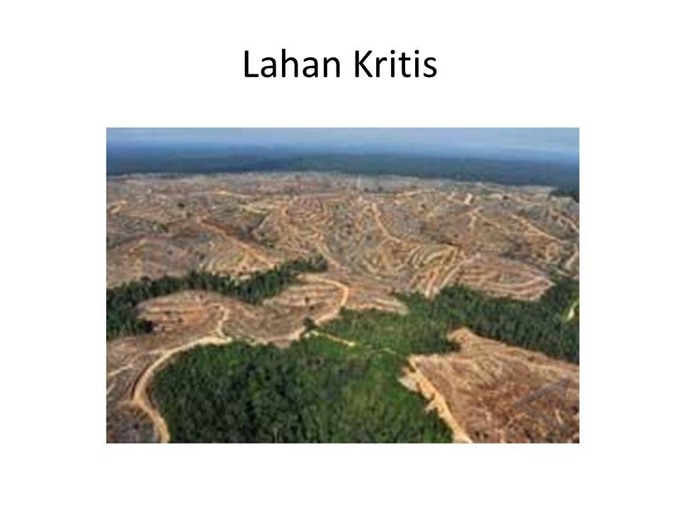 Lahan Kritis