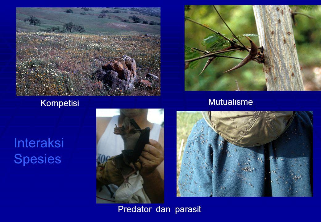 Kompetisi Mutualisme Interaksi Spesies Predator dan parasit