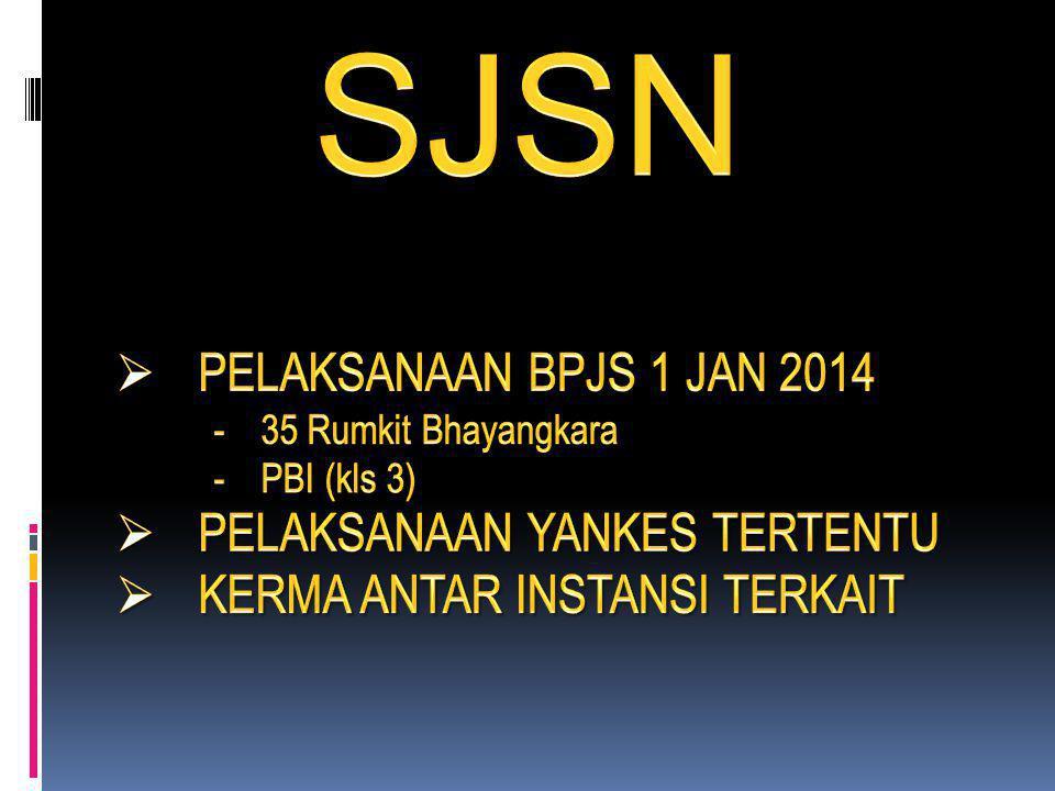 SJSN PELAKSANAAN BPJS 1 JAN 2014 PELAKSANAAN YANKES TERTENTU