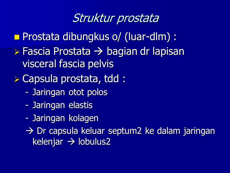 Struktur prostata Prostata dibungkus o/ (luar-dlm) :