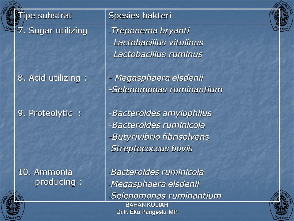Lactobacillus vitulinus Lactobacillus ruminus - Megasphaera elsdenii