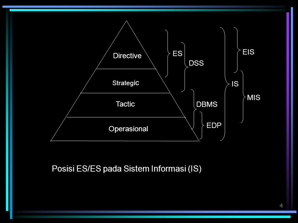 Posisi ES/ES pada Sistem Informasi (IS)