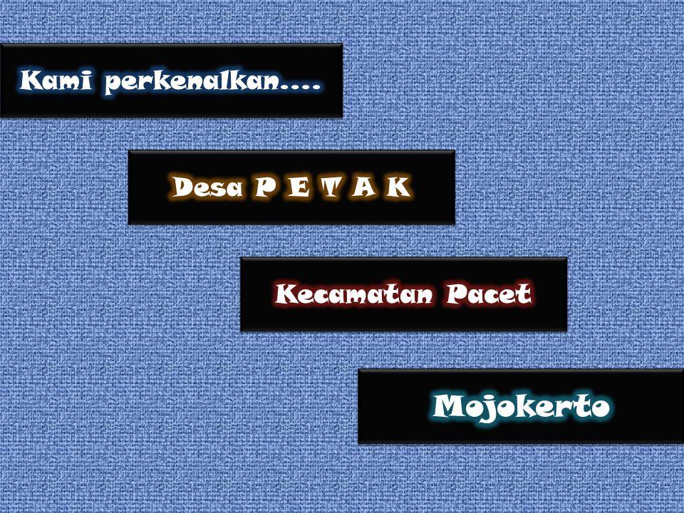 Kami perkenalkan.... Desa P E T A K Kecamatan Pacet Mojokerto