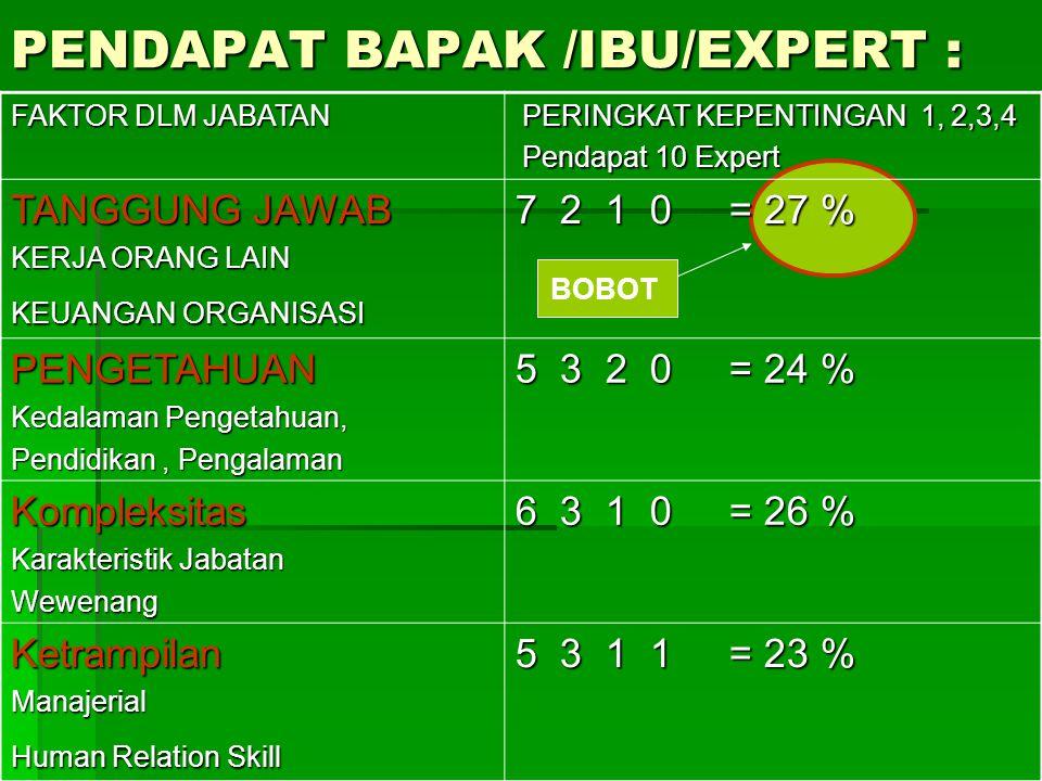 PENDAPAT BAPAK /IBU/EXPERT :