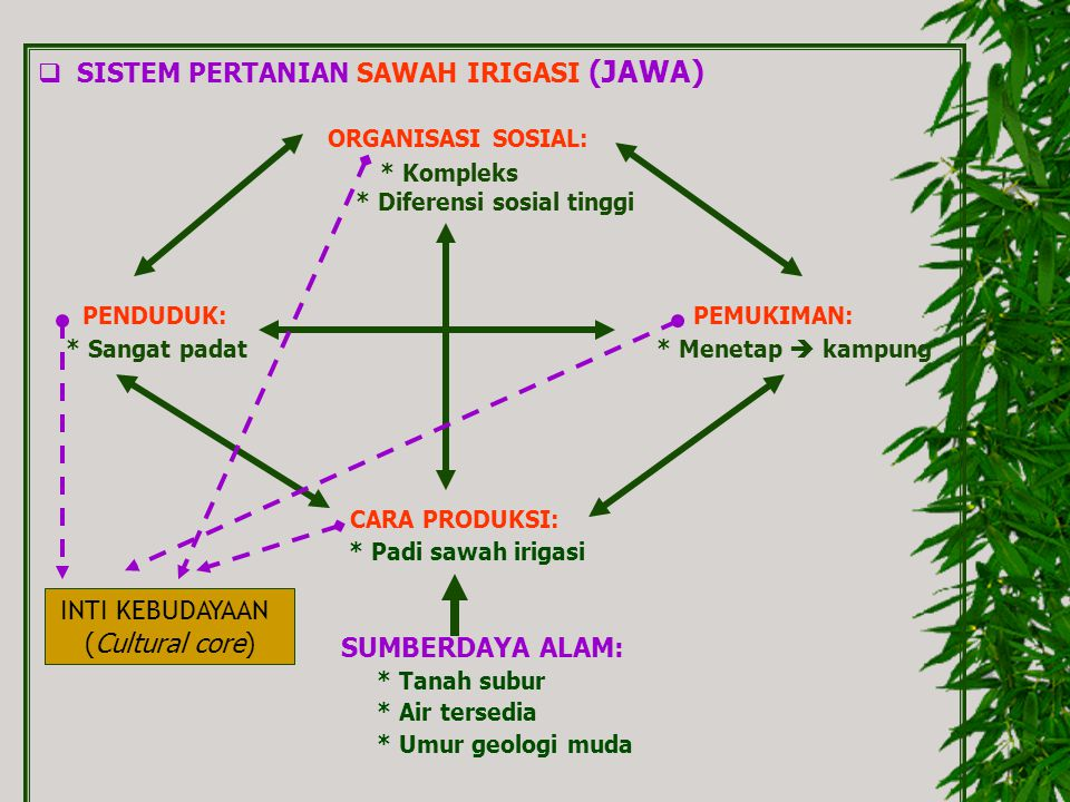 SISTEM PERTANIAN SAWAH IRIGASI (JAWA)