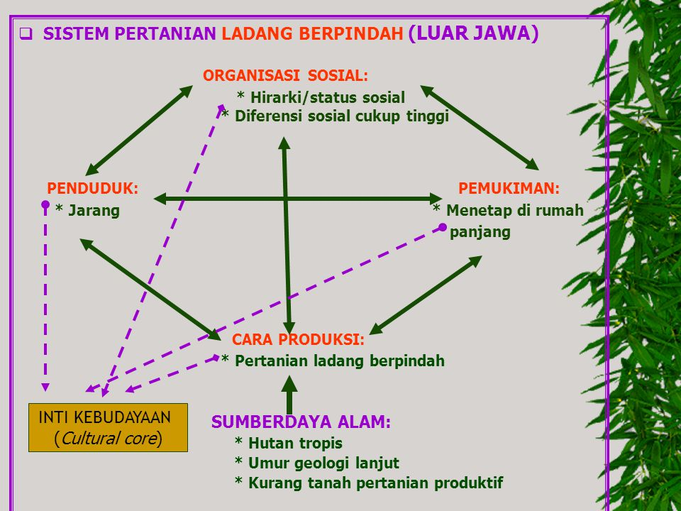SISTEM PERTANIAN LADANG BERPINDAH (LUAR JAWA)