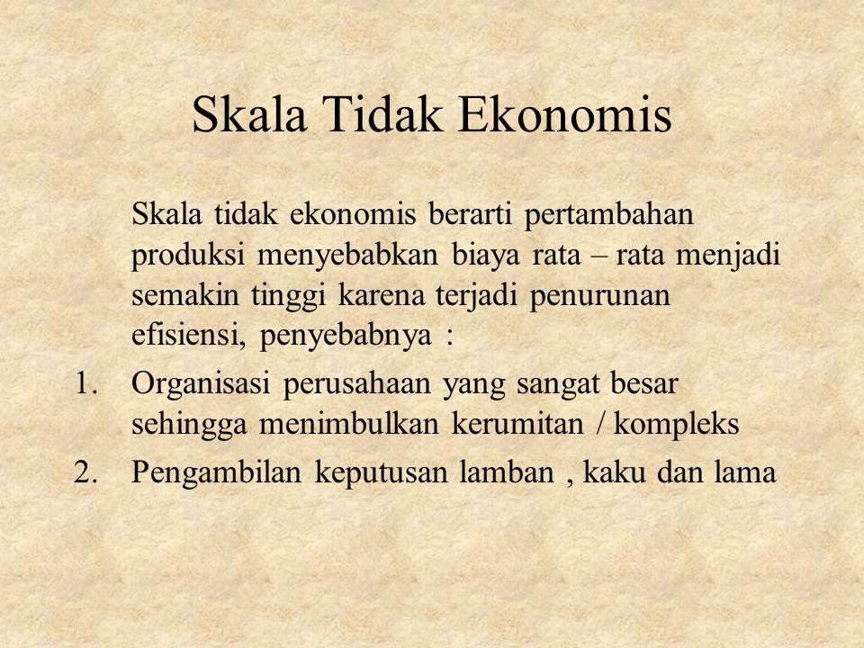 Skala Tidak Ekonomis