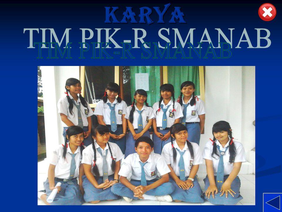 KARYA TIM PIK-R SMANAB