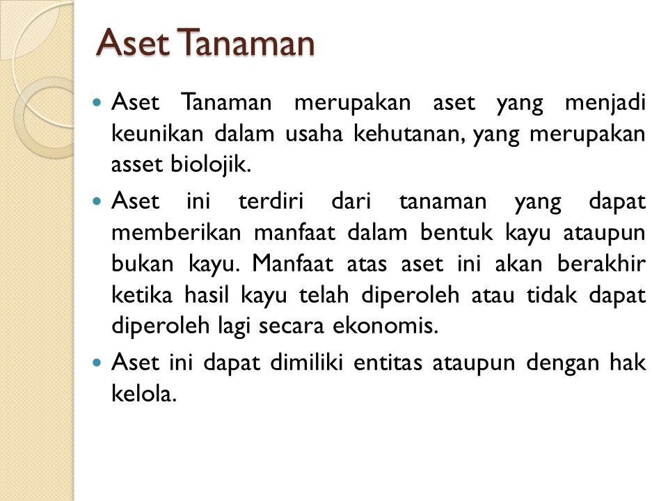 Aset Tanaman Aset Tanaman merupakan aset yang menjadi keunikan dalam usaha kehutanan, yang merupakan asset biolojik.