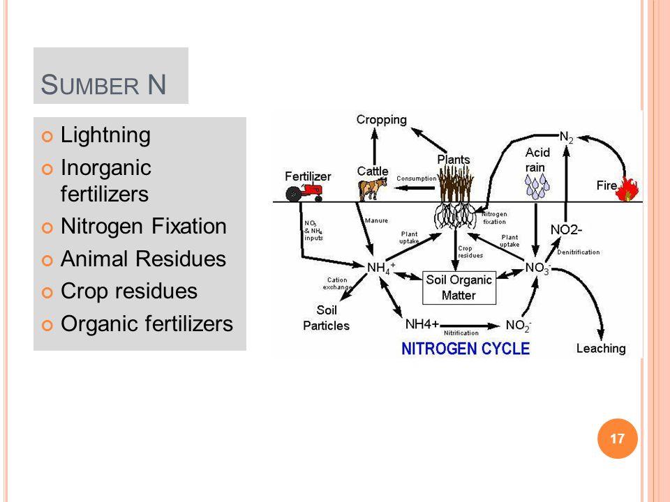 Sumber N Lightning Inorganic fertilizers Nitrogen Fixation