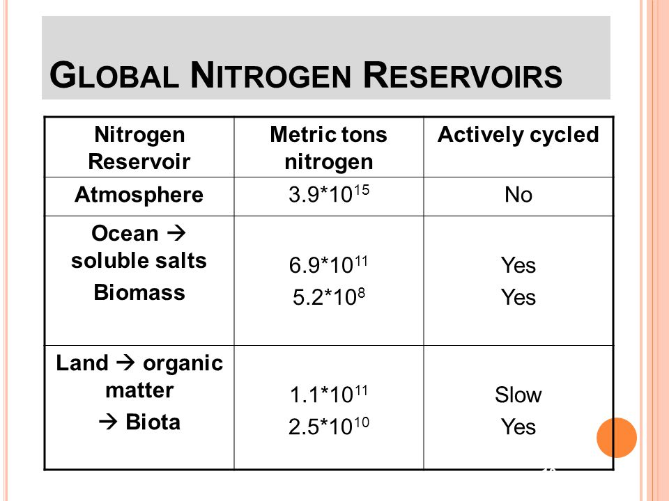 Global Nitrogen Reservoirs