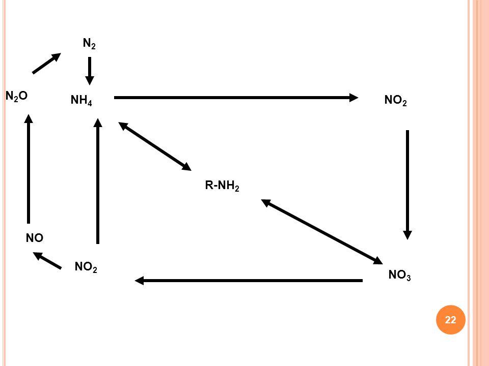 R-NH2 NH4 NO2 NO3 NO N2O N2