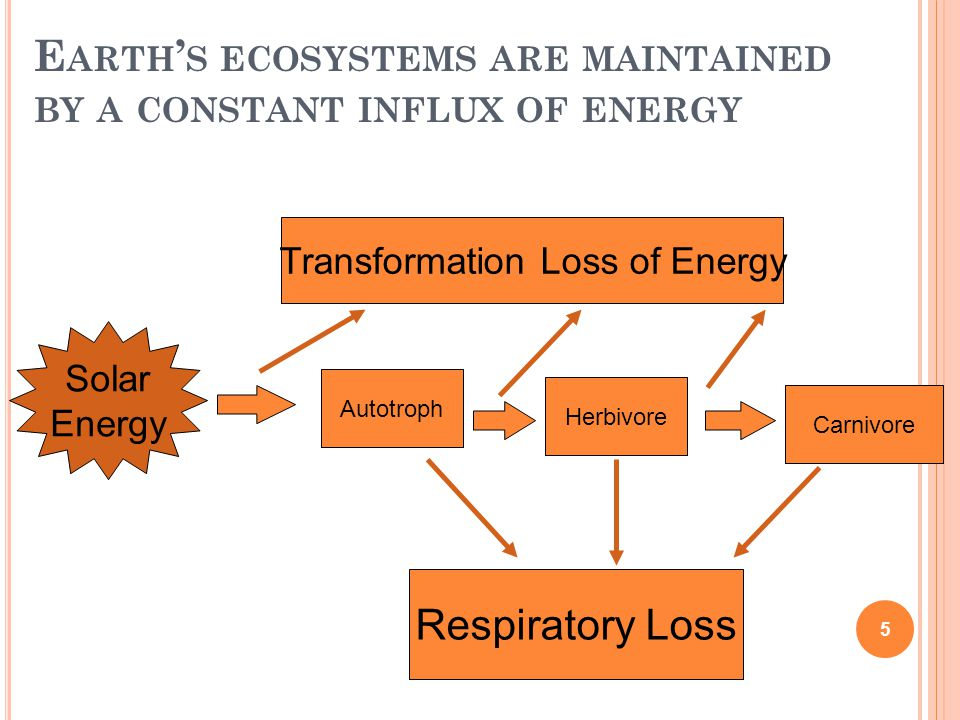 Earth's ecosystems are maintained by a constant influx of energy