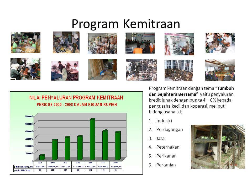 Program Kemitraan
