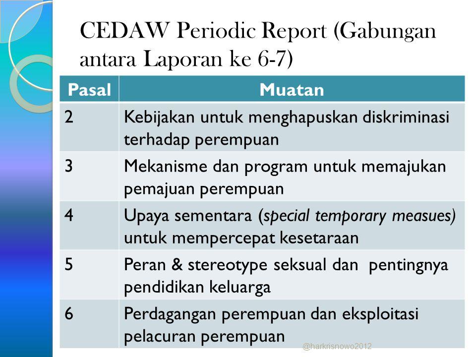 CEDAW Periodic Report (Gabungan antara Laporan ke 6-7)