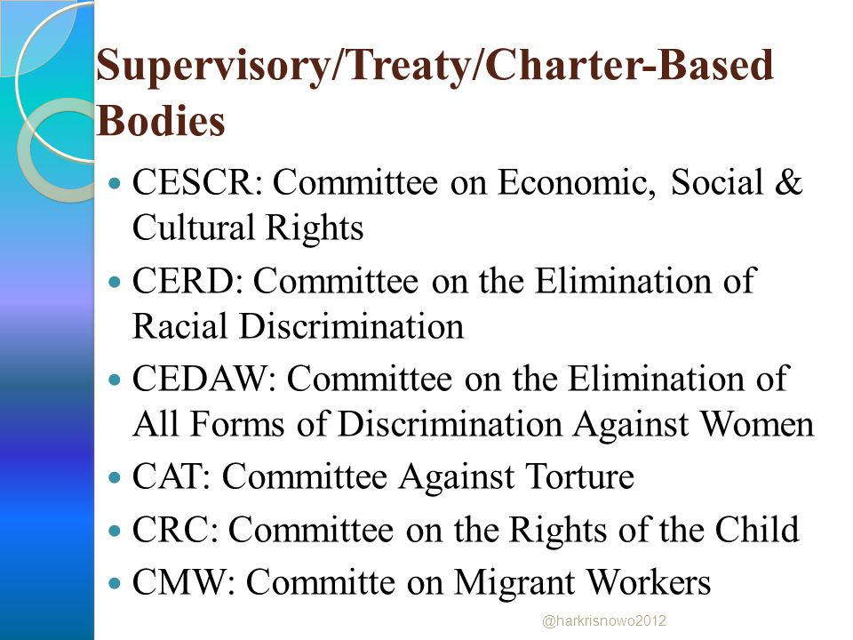 Supervisory/Treaty/Charter-Based Bodies