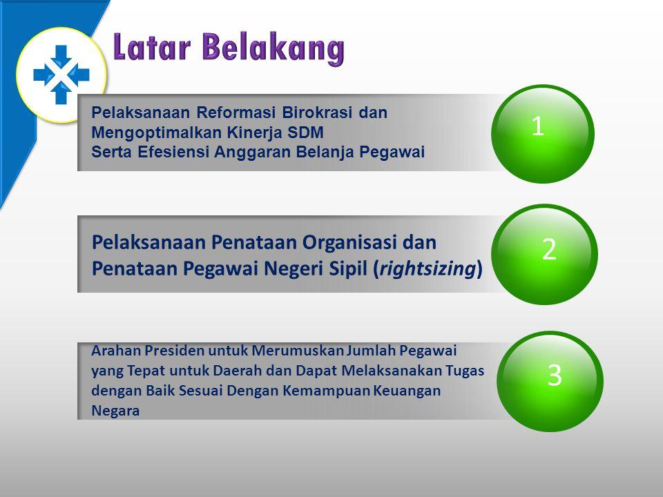 Latar Belakang 2 3 1 Pelaksanaan Penataan Organisasi dan