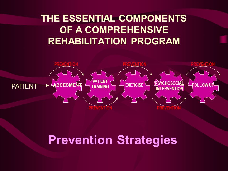 THE ESSENTIAL COMPONENTS OF A COMPREHENSIVE REHABILITATION PROGRAM