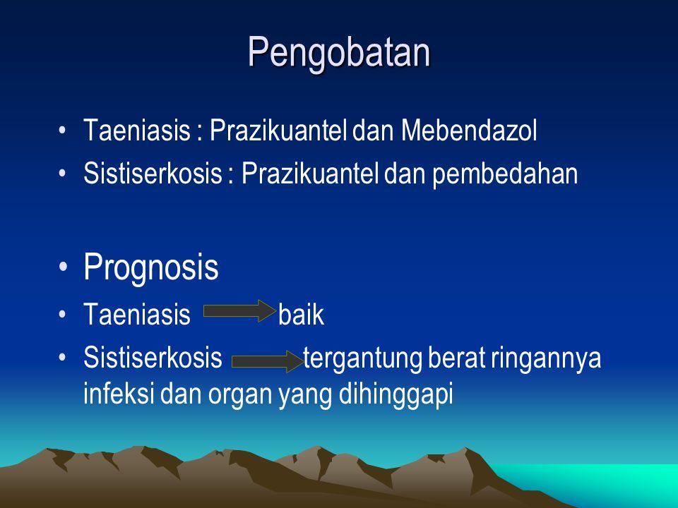 Pengobatan Prognosis Taeniasis : Prazikuantel dan Mebendazol