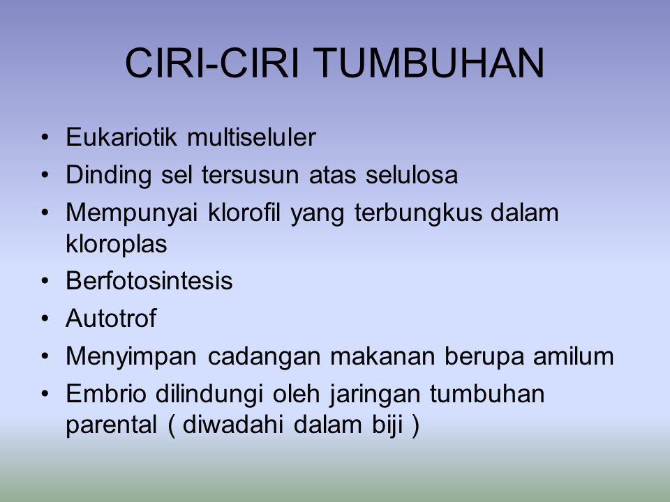 CIRI-CIRI TUMBUHAN Eukariotik multiseluler