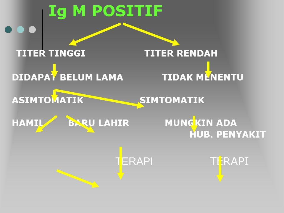 Ig M POSITIF TITER TINGGI TITER RENDAH TERAPI TERAPI