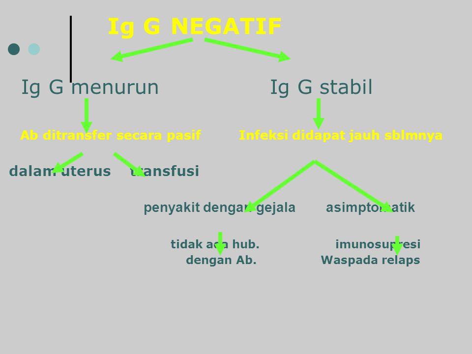 Ig G NEGATIF Ig G menurun Ig G stabil