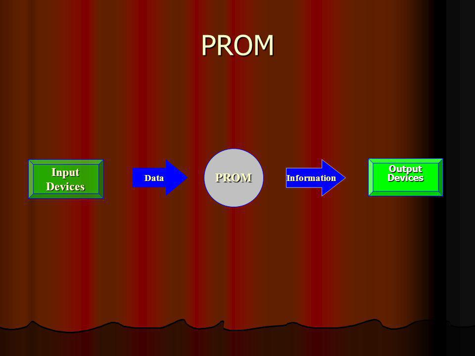 PROM PROM Input Devices Data Information Output Devices