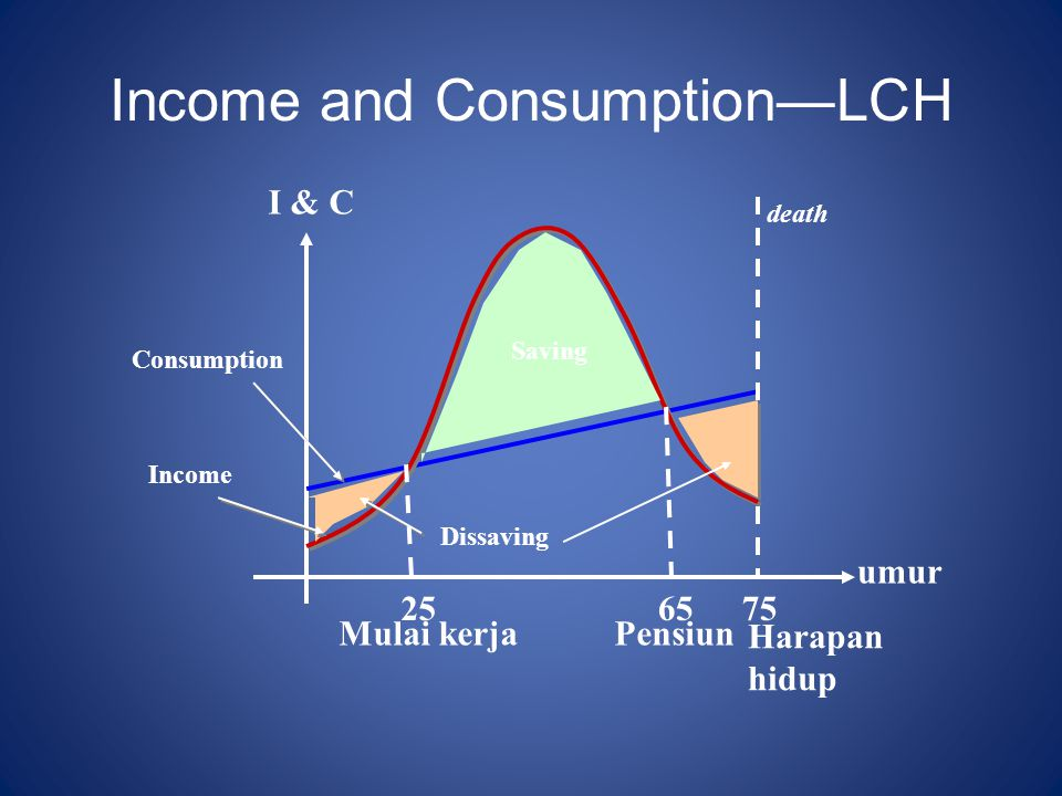 Income and Consumption—LCH