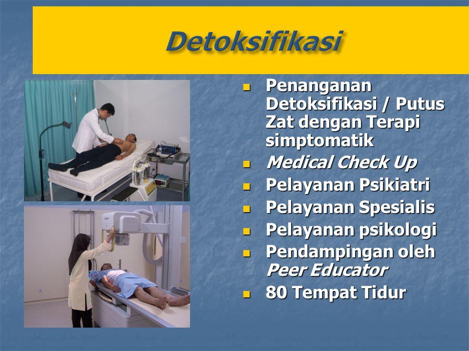 Detoksifikasi Penanganan Detoksifikasi / Putus Zat dengan Terapi simptomatik. Medical Check Up. Pelayanan Psikiatri.