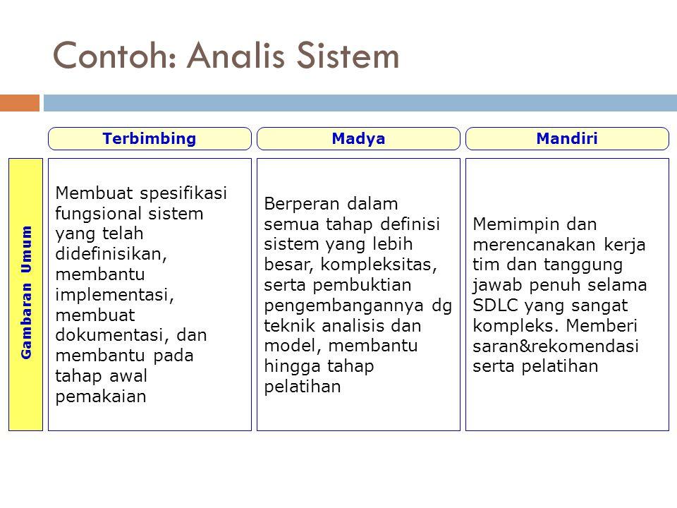 Contoh: Analis Sistem Gambaran Umum. Terbimbing. Madya. Mandiri.