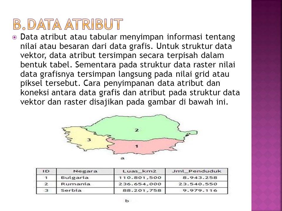 B.Data Atribut