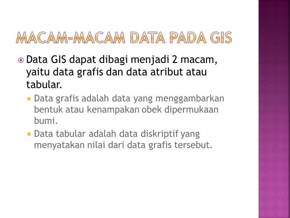 Macam-macam Data pada GIS