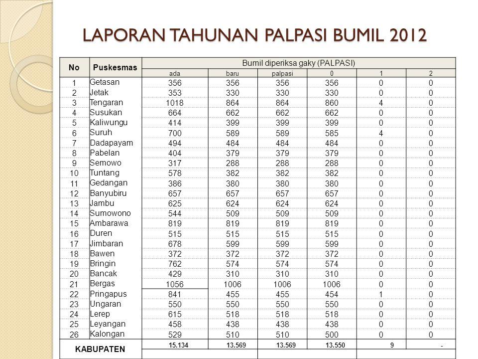 LAPORAN TAHUNAN PALPASI BUMIL 2012
