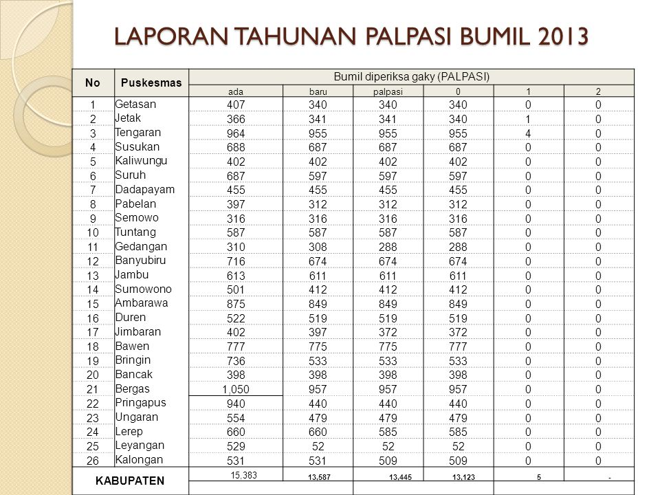 LAPORAN TAHUNAN PALPASI BUMIL 2013