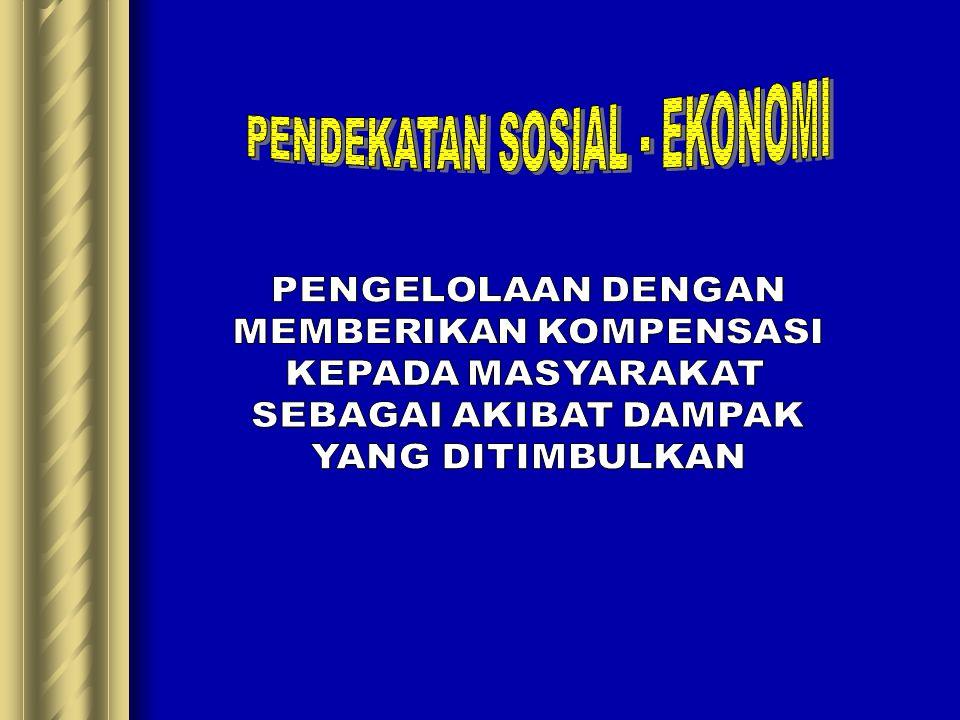 PENDEKATAN SOSIAL - EKONOMI