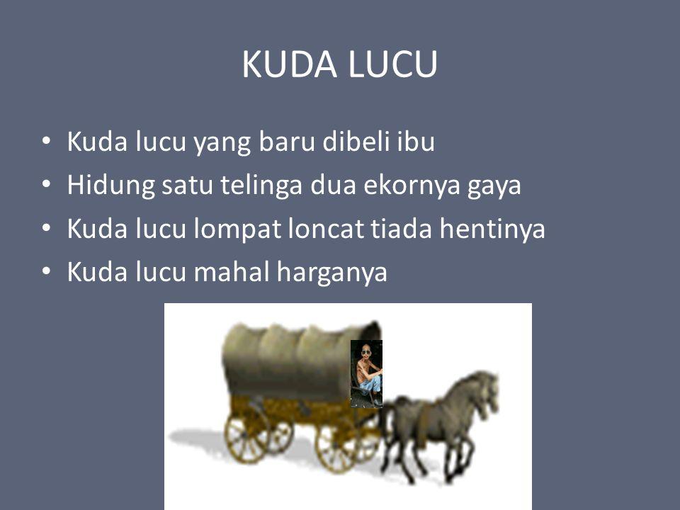 KUDA LUCU Kuda lucu yang baru dibeli ibu