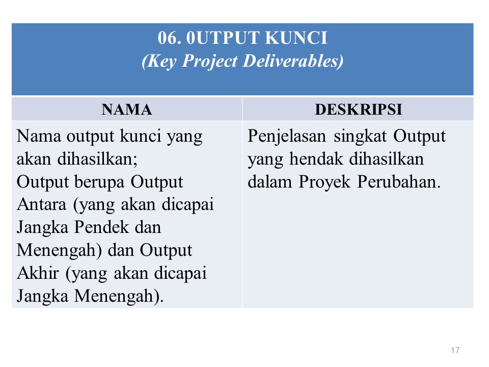 (Key Project Deliverables)