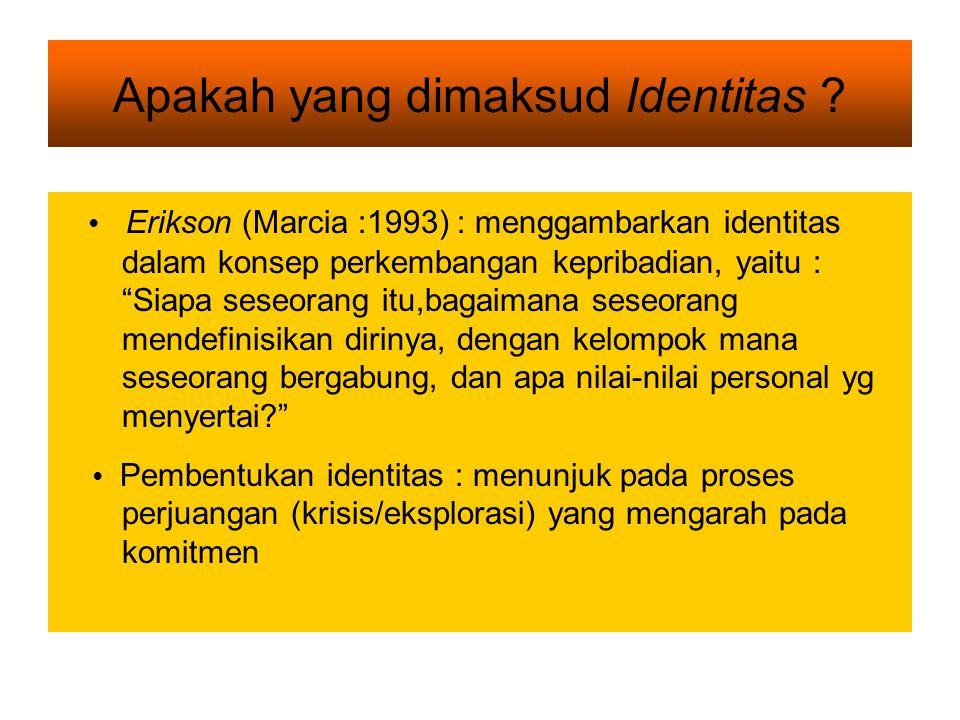 Apakah yang dimaksud Identitas