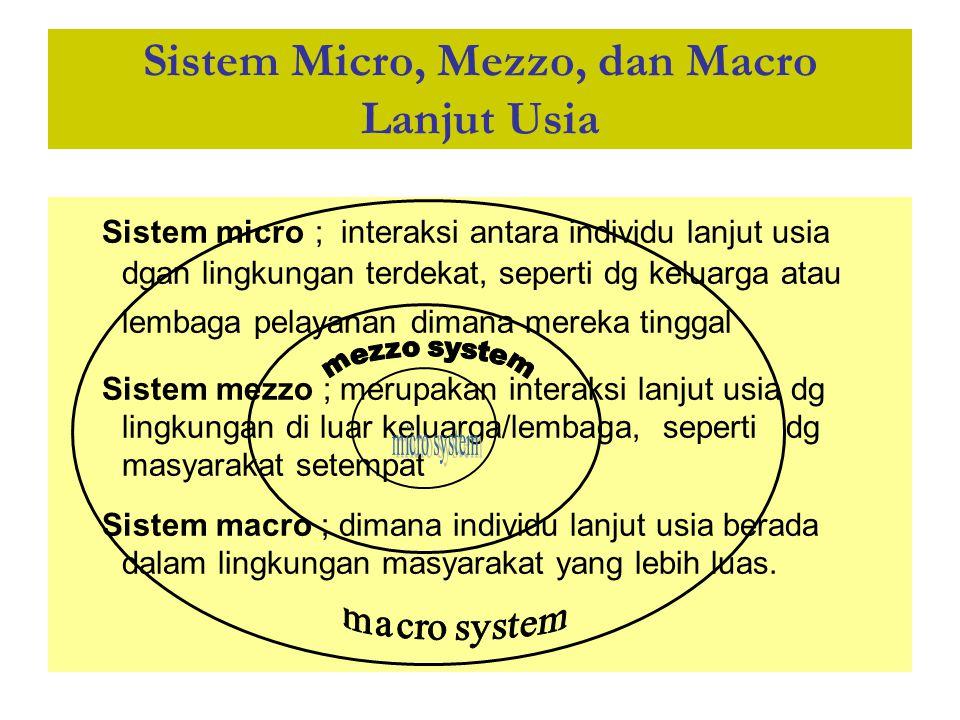 Sistem Micro, Mezzo, dan Macro Lanjut Usia