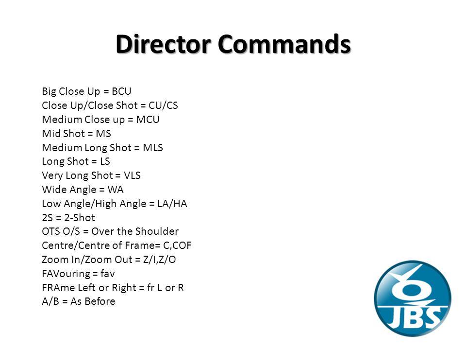 Director Commands