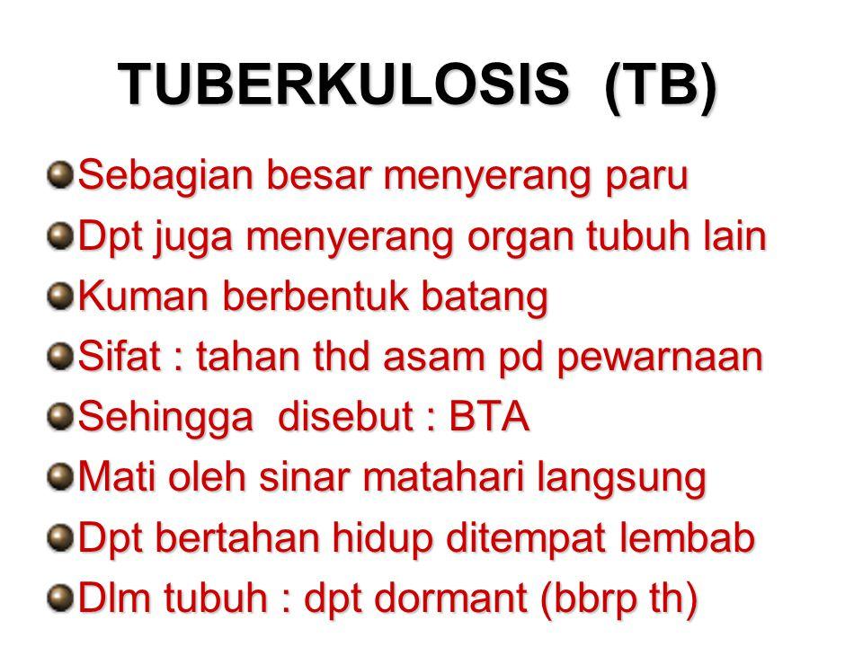 TUBERKULOSIS (TB) Sebagian besar menyerang paru