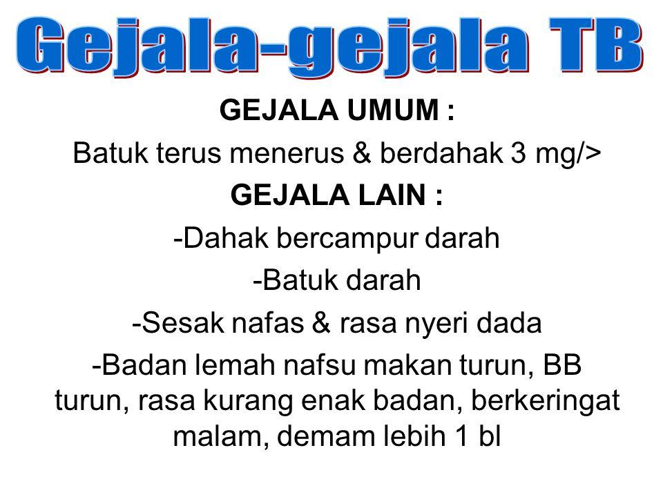 Gejala-gejala TB GEJALA UMUM :