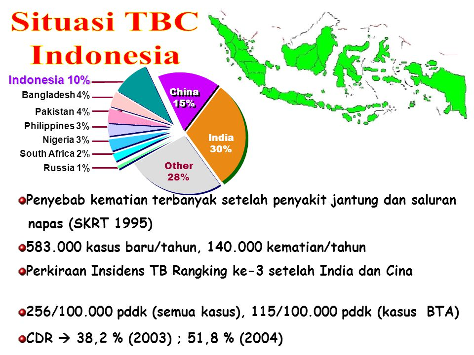 Situasi TBC Indonesia. Indonesia 10% Bangladesh 4% China. 15% India. 30% Other. 28% Philippines 3%