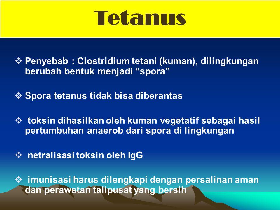 Tetanus Penyebab : Clostridium tetani (kuman), dilingkungan berubah bentuk menjadi spora Spora tetanus tidak bisa diberantas.