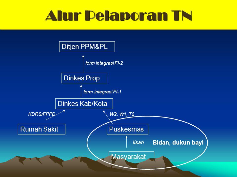 Alur Pelaporan TN Ditjen PPM&PL Dinkes Prop Dinkes Kab/Kota