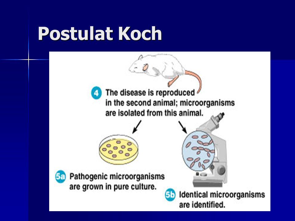 Postulat Koch