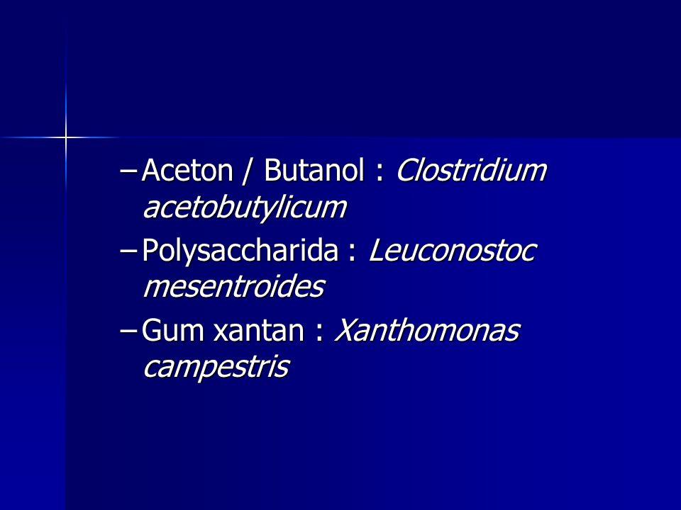 Aceton / Butanol : Clostridium acetobutylicum