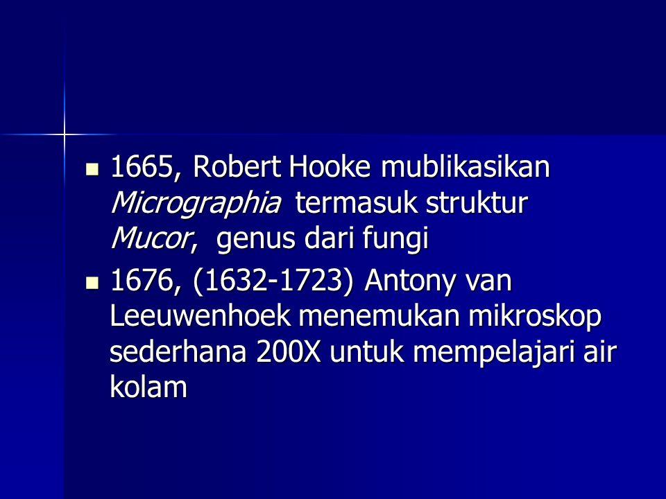 1665, Robert Hooke mublikasikan Micrographia termasuk struktur Mucor, genus dari fungi