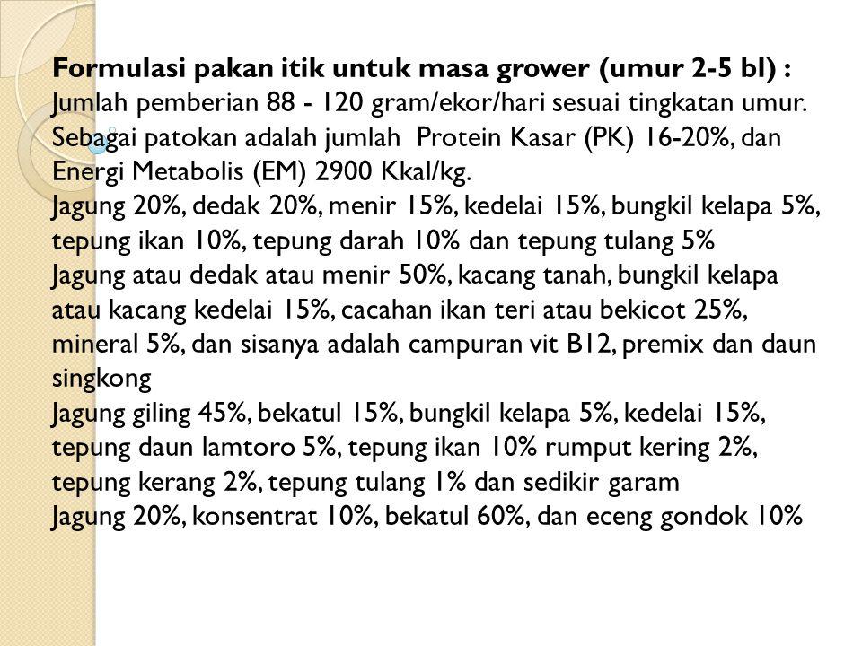 Formulasi pakan itik untuk masa grower (umur 2-5 bl) : Jumlah pemberian 88 - 120 gram/ekor/hari sesuai tingkatan umur. Sebagai patokan adalah jumlah Protein Kasar (PK) 16-20%, dan Energi Metabolis (EM) 2900 Kkal/kg.